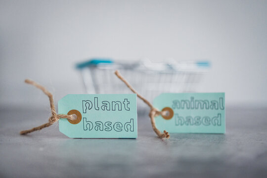 plant-based and animal-based product tags with grocery shopping basket, healthy nutrition and ethical choices