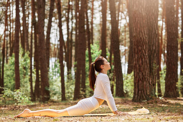 Outdoor profile portrait of slim female practicing yoga in forest, dresses white sportswear, doing cobra pose on karemat in open air, looking straight ahead.