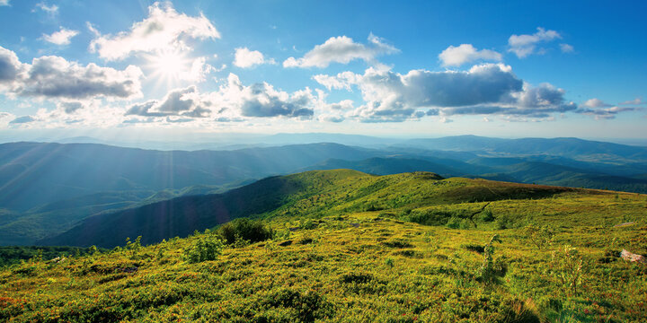 alpine meadow of carpathian mountains in summer. view in to the distant valley in afternoon light. beautiful sunny nature landscape with clouds on the sky