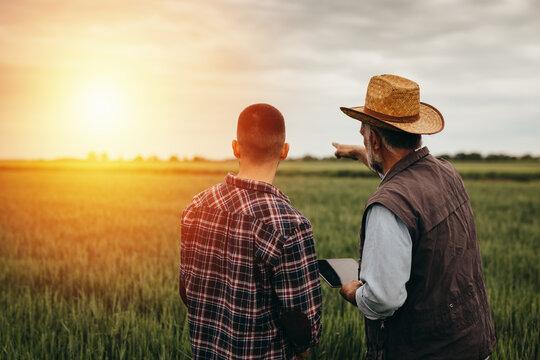 workers talking in wheat field