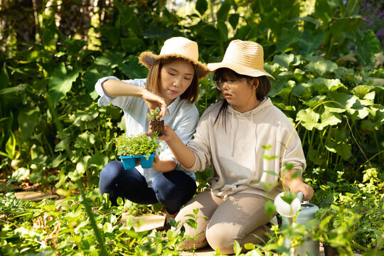 Asian woman with her daughter in straw hats holding plants in garden
