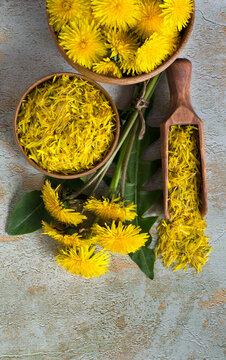 Useful dandelion flowers