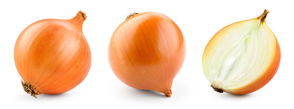 Onion bulbs isolated. Whole golden onion bulb and a half on white background. Onion set. Full depth of field. With clipping path.