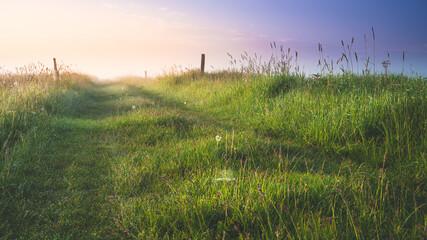 Fototapeta Polna droga o wschodzie słońca. Romantyczny wschód słońca. obraz