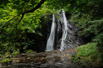 waterfall in the forest Wall mural