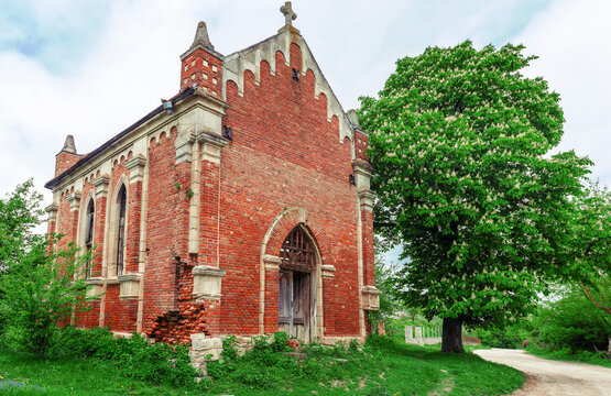 Old abandoned church with red bricks on a background of trees. Blooming chestnut