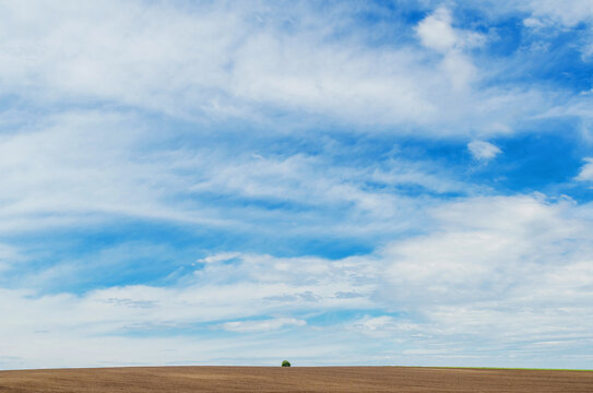 Clear plowed field on a background of white clouds sky