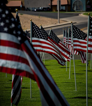 American flags fly wave in memorium honor of freedom veterans soldiers fallen lost during war time in defense of democracy western civilization.