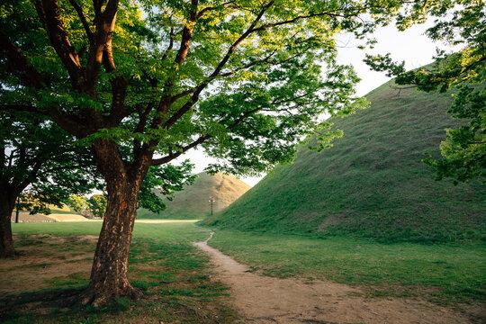 Daereungwon ancient tomb in Gyeongju, Korea