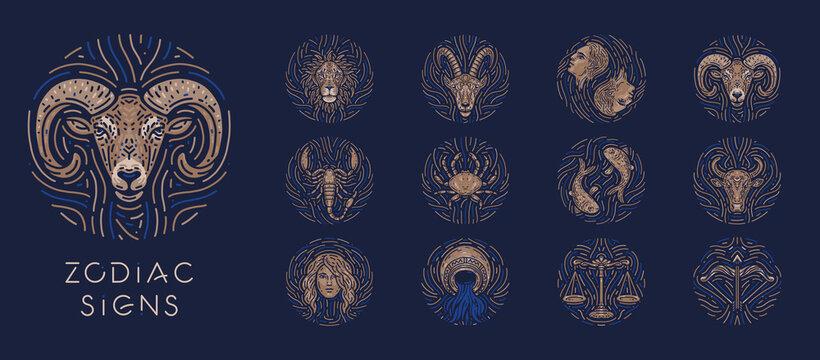 Zodiac signs on dark background