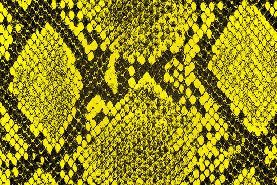 Yellow snake skin background. Yellow python leather as background.