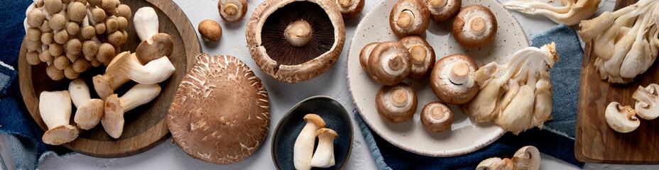Fototapeta Variety of raw mushrooms on light gray background. obraz