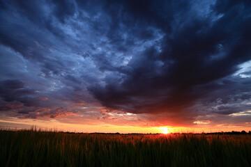 słońce na horyzoncie podświetla kłosy zbóż