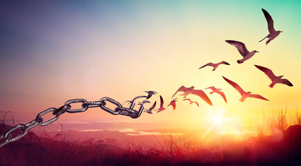 Obraz Freedom - Chains That Transform Into Birds - Charge Concept - fototapety do salonu