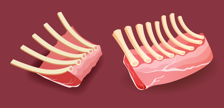 Raw meat - Veal rack Ribs on red background vector illustration