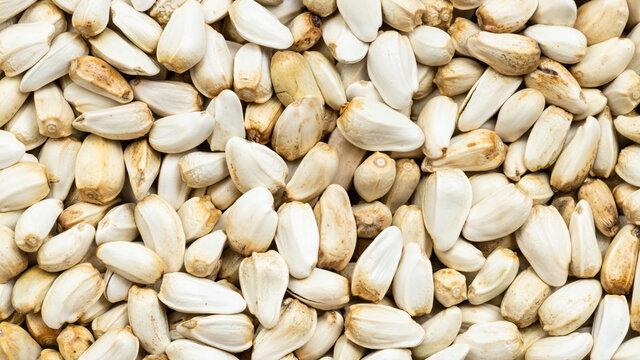 whole safflower seeds close up