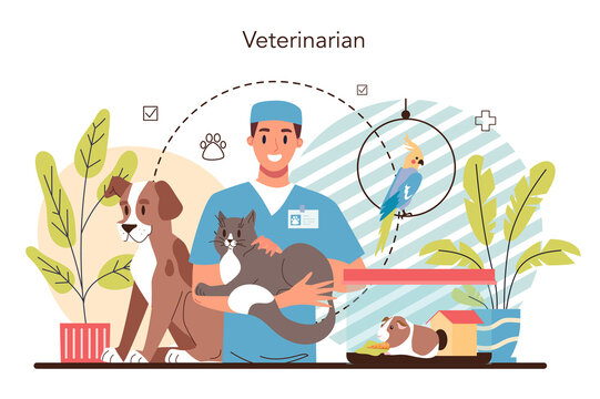 Pet veterinarian concept. Veterinary doctor checking and treating animal.