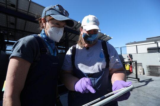 Dr. Cara Field, medical director at the Marine Mammal Center, speaks with vet tech intern Carlene Mendieta in Sausalito