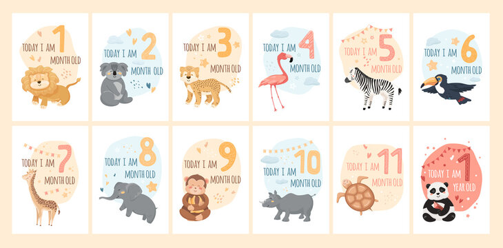 Baby milestone cards with cute animals and numbers. Kids month anniversary prints for newborn girl, boy. Jungle characters with graphic elements, stars, heart, clouds. Cartoon vector illustrations set