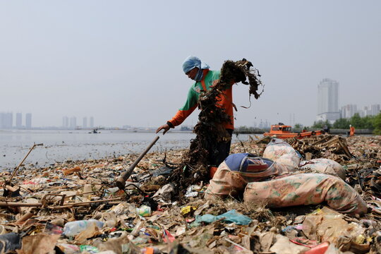 Municipality workers collect garbage along the shore of Jakarta