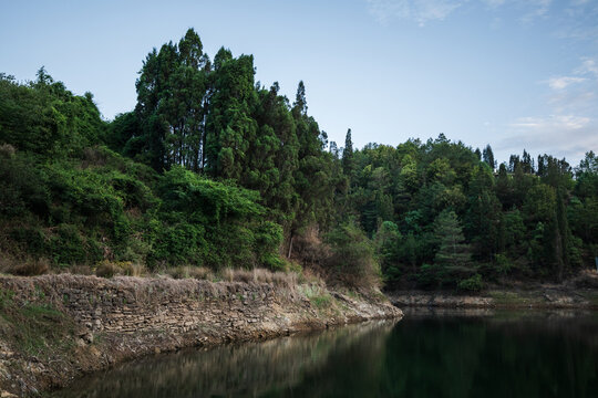 Lake with green trees in Yunnan province