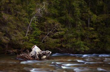 Fototapeta Rzeka Białka Tatrzańska  obraz