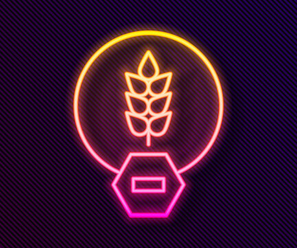 Glowing neon line Gluten free grain icon isolated on black background. No wheat sign. Food intolerance symbols. Vector