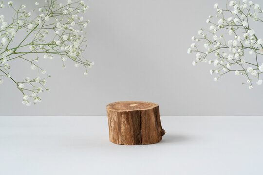 Empty round wooden podium for product presentation, white gypsophila flowers on grey background. Natural materials background for cosmetic advertising with cylinder shape showcase. Mockup concept.
