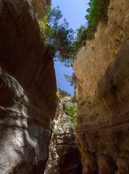 Avakas Gorge with steep rocks. Akamas peninsula, Cyprus.
