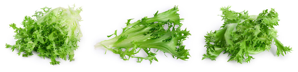Fresh green leaves of endive frisee chicory salad isolated on white background with full depth of field. Set or collection
