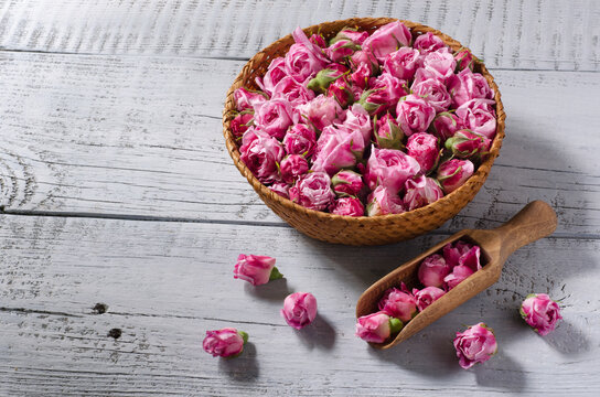 Fresh tea rose buds