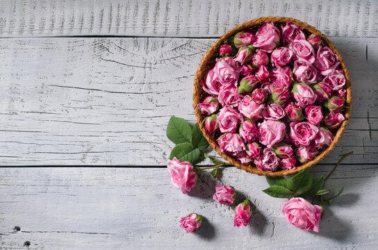 Basket with buds of tea-rose