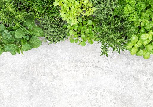 Fresh herbs Food background basil parsley rosemary thyme