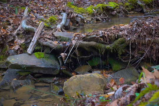 Stream flowing into Armurchee creek over roots and rocks in Chattahoochee National Forest mountains near John's Mountain in Georgia