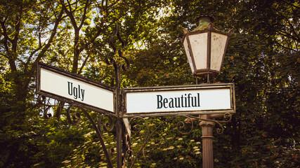 Fototapeta Street Sign Beautiful versus Ugly obraz