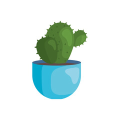 Fototapeta Cactus inside pot obraz