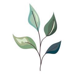 Fototapeta Plant leaves icon obraz