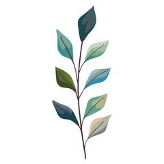 Fototapeta Plant green leaves obraz