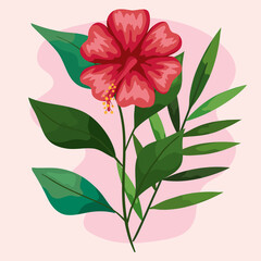 Fototapeta red hawaiian flower with leaves obraz