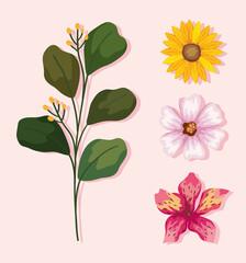 Fototapeta leaves and flowers set obraz