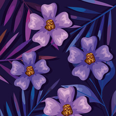 Fototapeta purple flowers background obraz