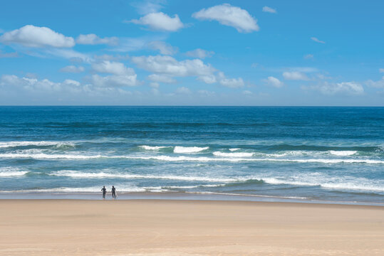 beautiful landscape of the coast in the south west of France with surfers in the distance