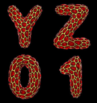 Realistic 3D letters set Y, Z and numbers 0, 1 made of gold shining metal letters.