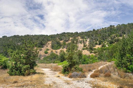 Hiking trail in Avakas Gorge. Akamas peninsula, Cyprus.