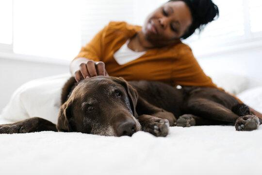 Woman petting dog at home