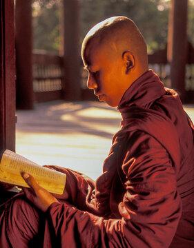 Myanmar, Mandalay, Buddhist monk reading prayers book