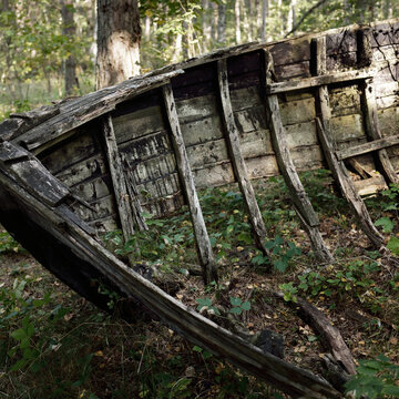 Old abandoned wooden fishing boat in the forest, close-up. Boats cemetery in Mazirbe, Livonian village, Latvia. Concept image, atmospheric landscape, travel destinations, shipwreck, past, history
