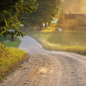 Winding rural road (alley) through the village and deciduous trees. Soft golden evening light, sunbeams. Old traditional house in the background. Eco tourism, cycling, vacations, recreation, farm