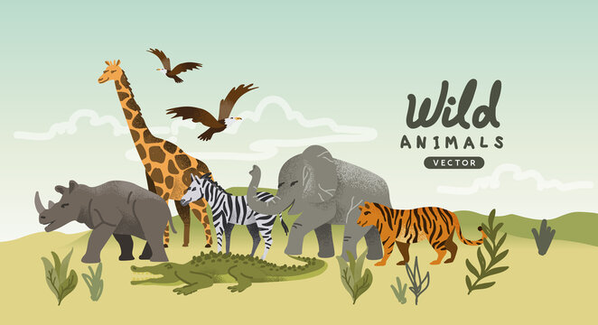 A collection of wild natural roaming animal characters. Animal story Vector illustration