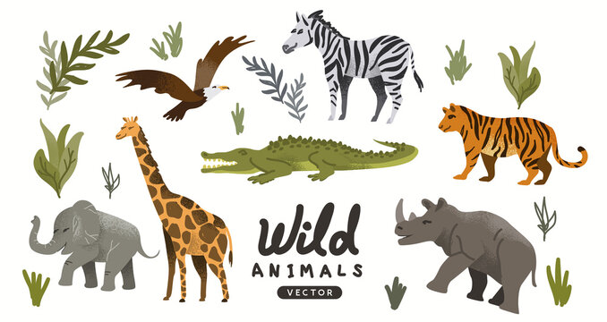 A collection of wild natural roaming animals including Elephants and tigers. Animal adventure Vector illustration